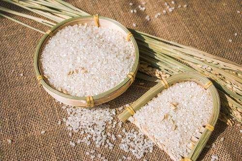 关于糙米的营养价值